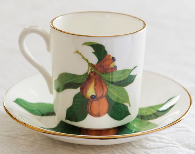 Fine Bone China Jamaican Ackee Demitasse Coffee Cups