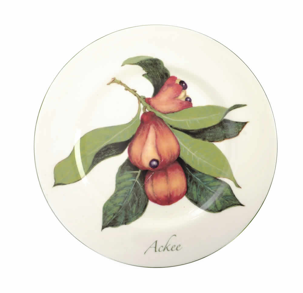 "Jamaican Ackee bone china 10"" Dinner Plate"
