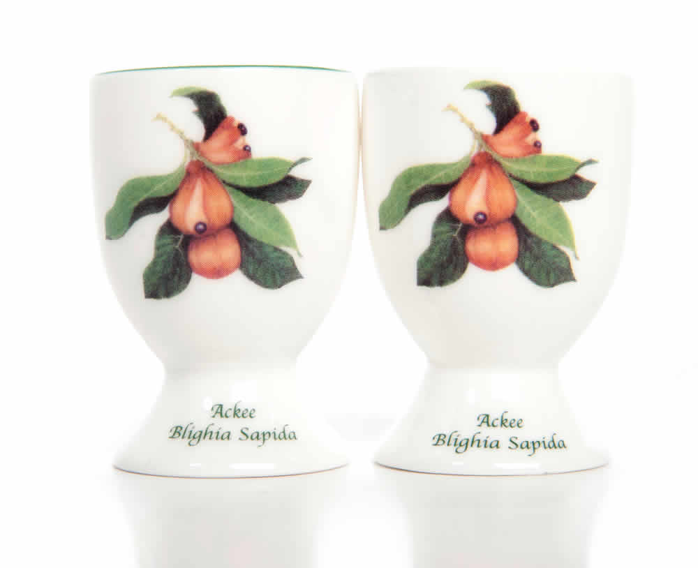 Pair of Jamaican bone china Egg Cups