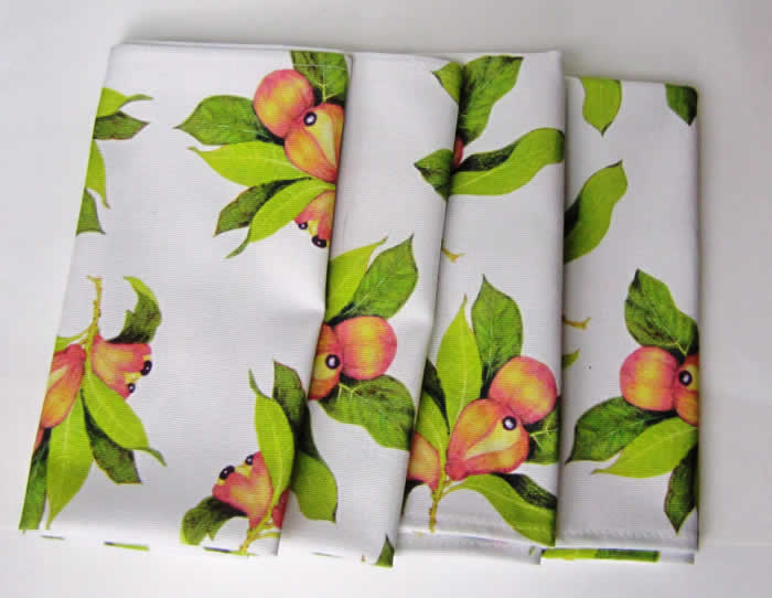 Set of 4 Jamaican Ackee table napkins